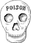 poison,skull,media,clip art,externalsource,public domain,image,png,svg,anatomy,bone,death,uspto,bone