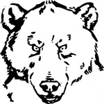 bear,head,animal,grizzly,media,clip art,externalsource,public domain,image,png,svg