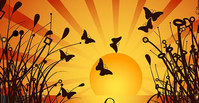 nature,_nature,butterfly,sunset,under,silhouette,sun,afternoon,scene