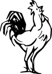 rooster,calling,animal,chicken,outline,colouring book,farm,externalsource