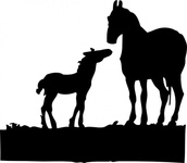 mare,foal,animal,horse,silhouette