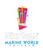 Six,Flags,Marine,World