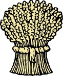 wheat,sheaf,bundle,farming,grain