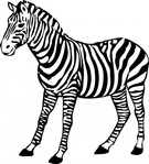 zebra,media,clip art,externalsource,public domain,image,png,svg,animal,mammal,black,white