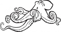 coloring,book,octopus,line art,animal,sea creature,contour,colouring book,media,clip art,externalsource,public domain,image,png,svg