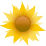 sunflower,checked,editorial pick,cartoony sunflower,sunflower icon,sun,flower,icon,leaf,media,clip art,public domain,image,png,svg