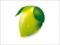 lemon,fruit,limon keylime green fresh lemon