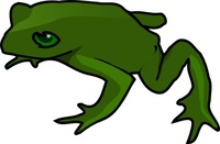 frog,media,clip art,public domain,image,png,svg,animal,nature,amphibian