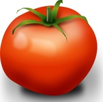 tomato,food,red,nature,plant,kitchen,vegetable,photorealistic
