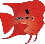 flowerhorn,fish,media,clip art,how i did it,public domain,image,png,svg,cichlid,aquarium,water,flower,red,animal