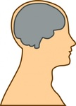 medical,diagram,brain,people,person,head,body,anatomy,silhouette