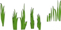 grass,blade,clump,media,clip art,public domain,image,png,svg,nature,green,plant,template,grouping