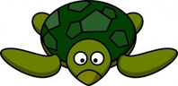 cartoon,turtle,colour,animal,tortoise,funny,media,clip art,how i did it,public domain,image,png,svg