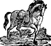 woodcut,horse,animal,mammal,media,clip art,externalsource,public domain,image,png,svg