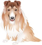 dog,vector,collection
