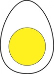 white,yellow,protein,food,animal,egg