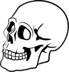 skull,head,bone,skeleton,face,human