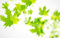 abstractmleaf,leaf,green,nature,background,backdrop,scene,animals,backgrounds & banners,buildings,celebrations & holidays,christmas,decorative & floral,design elements,fantasy,food,grunge & splatters,heraldry,free vector,icons,map,misc,mixed,music,nature