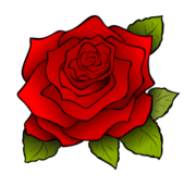 rosa,rose,flower,red,rojo,flor