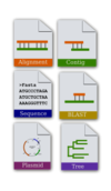 bioinformatics. icon,set,align,sequence,contig,plasmid,tree,phylogeny,blast,bioinformatics. icon,blast,svg,png