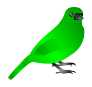 bird,animal,nature,wing,fly,inkscape