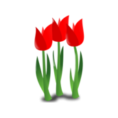 worldlabel,mother day,mother,flower,event,holiday,occasion,icon,color,mother day,flower,event,holiday,occasion
