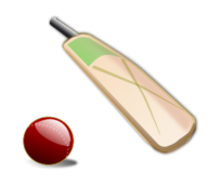 cricket,game,sport,team sport,icon,bat,player,britain,british,uk