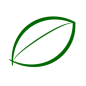 icon,leaf,green,logo,nature,tree,symbol,plant,biology,element