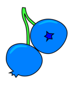 blueberry,fruit,berry,food,blue,two,stem