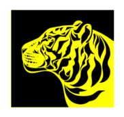 a yellow tiger