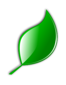 leaf,eko,environment,green,nature,icon,leaf icon,green icon,eco