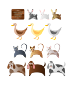 farm animals,cat,dog,rabbit,bunny,duck