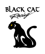 Black,Cat,Racing
